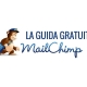 MailChimp Guida all'uso in italiano